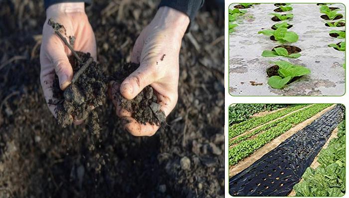 ¿Como desinfectar el suelo?
