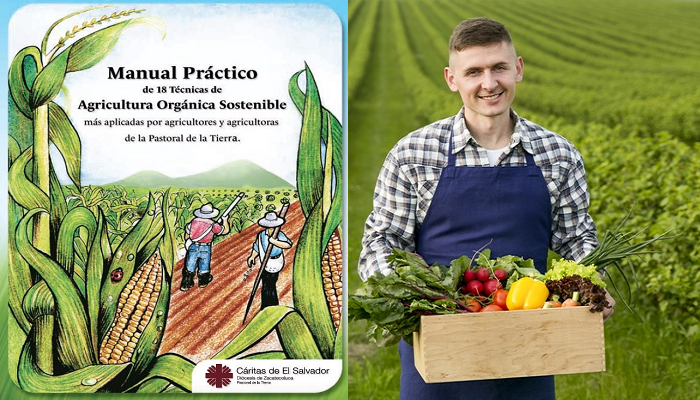 Exitoso : Manual Practico de 18 Técnicas de Agricultura Orgánica Sostenible PDF.