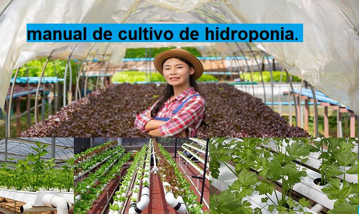 El Exitoso Manual Técnico de Hidroponía.