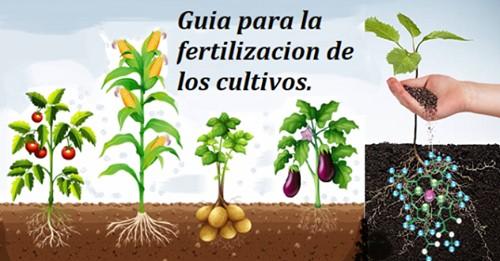 Guía Practica para la Fertilización Racional de Cultivos.
