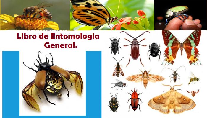 Exitoso libro de Entomología General.pdf
